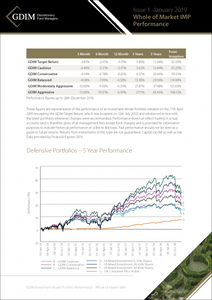 GDIM Investment Portfolio Performance Insert